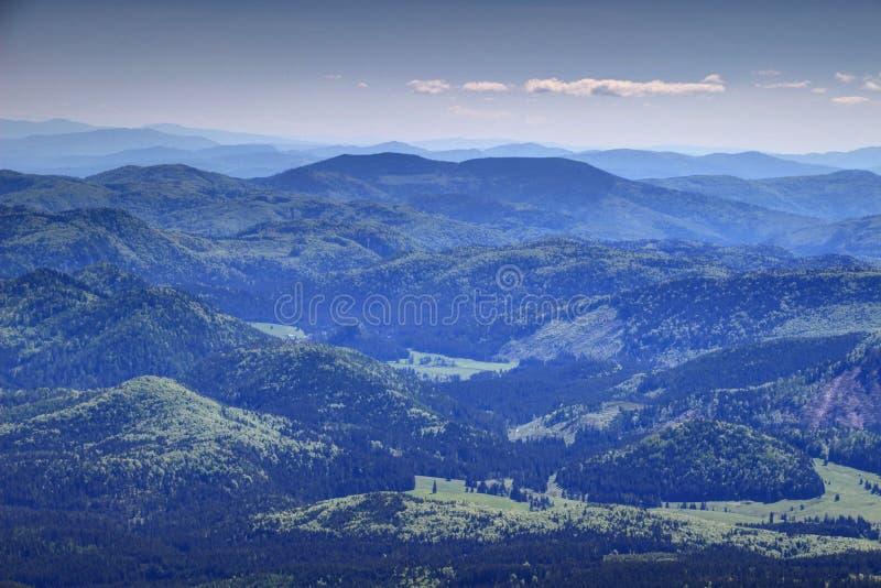 Пологие склоны с зелеными горами Словакией руды словака лесов стоковая фотография rf