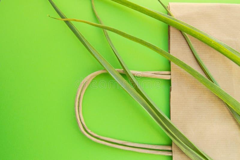 Положение бумажного взгляда сверху eco хозяйственной сумки плоское с herbaceous заводами на зеленой предпосылке, нул концепциях э стоковая фотография rf