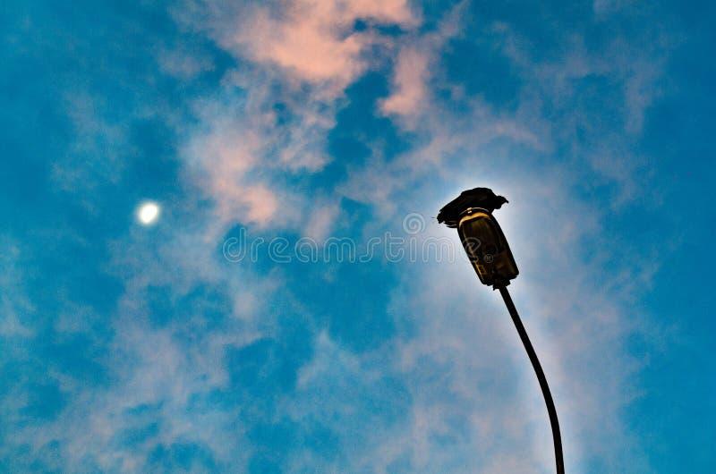 Положение ворона на фонарном столбе обозревая небо и луну выше стоковые изображения