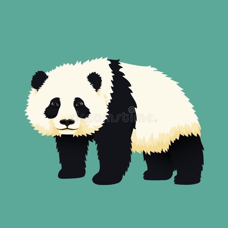 Положение гигантской панды младенца Черно-белый китайский новичок медведя иллюстрация штока