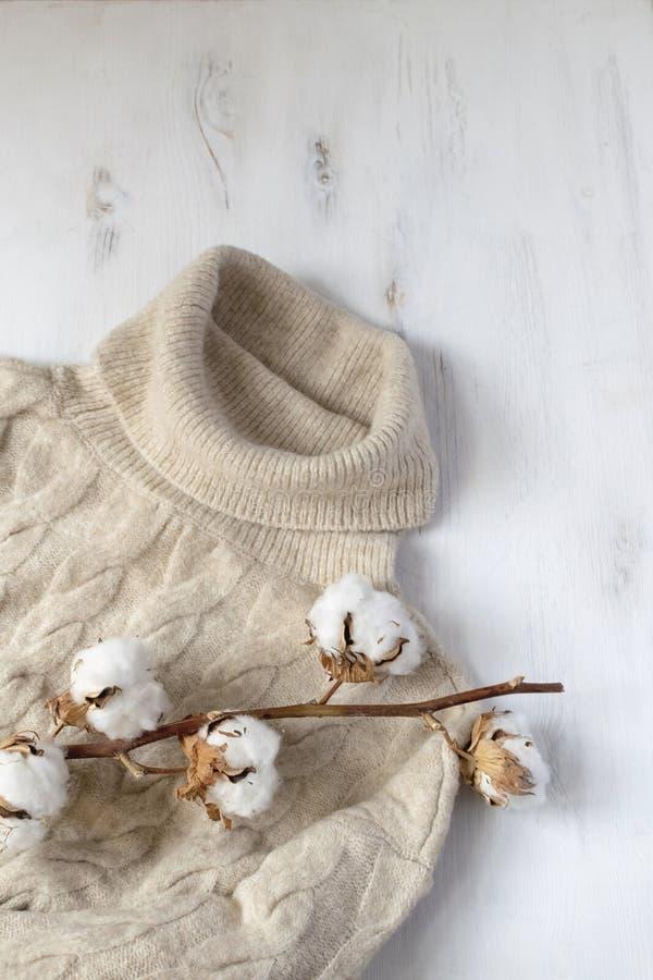 Положение минимальной скандинавской зимы плоское - связанный свитер и высушенная ветвь хлопка, белая предпосылка, космос экземпля стоковое изображение