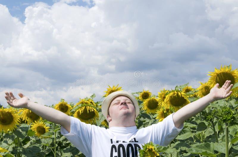 Положение молодого человека с оружиями широко открытыми в поле солнцецвета Счастливый человек с Синдромом Дауна в сельской местно стоковые изображения