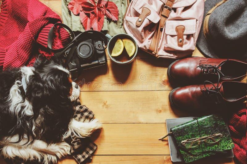 Положение осени уютное плоское с свитером, ботинками, винтажной собакой камеры, рюкзака и spaniel стоковое фото rf
