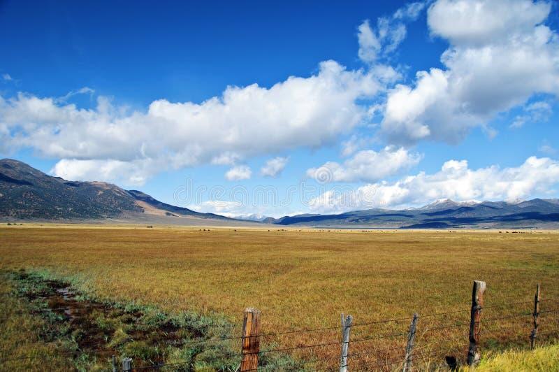 положение США yosemite национального парка ca стоковые изображения rf