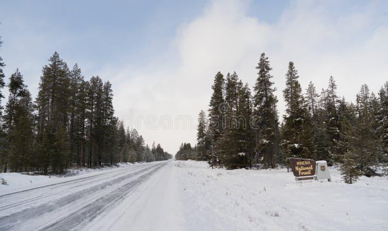 Положительный знак национального леса Winema древесин зимы стоковые изображения rf