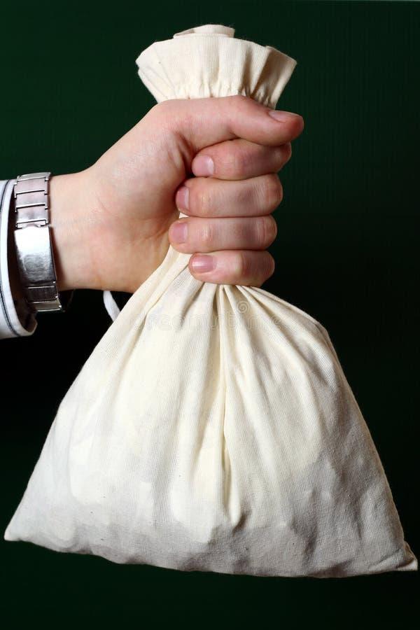 положите деньги в мешки стоковая фотография rf