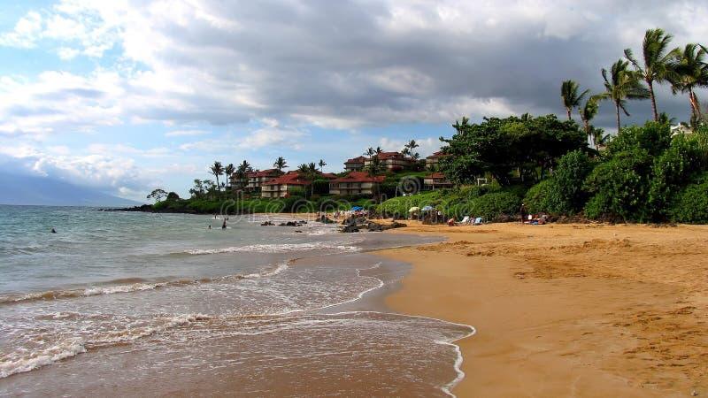 поло maui пляжа стоковые изображения