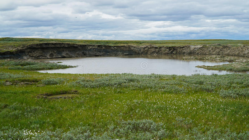 ПОЛУОСТРОВ YAMAL, РОССИЯ - 18-ОЕ ИЮНЯ 2015: Экспедиция к гигантской воронке неизвестного начала Бывший кратер, который стал a стоковое изображение rf