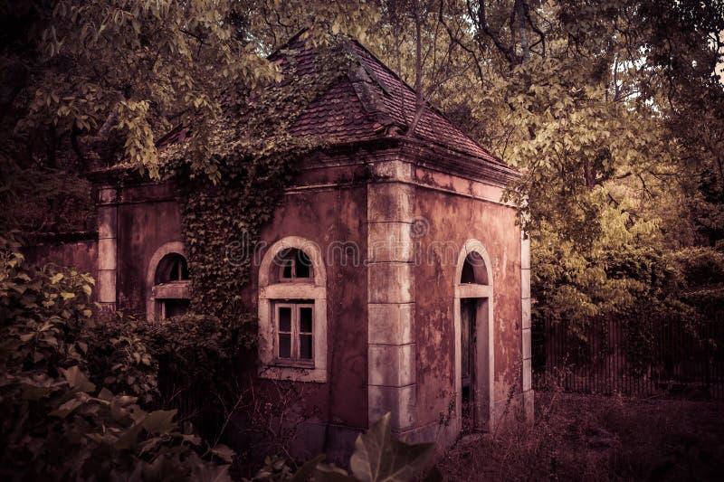 Получившийся отказ дом руин принятый окружающей растительностью стоковое изображение rf