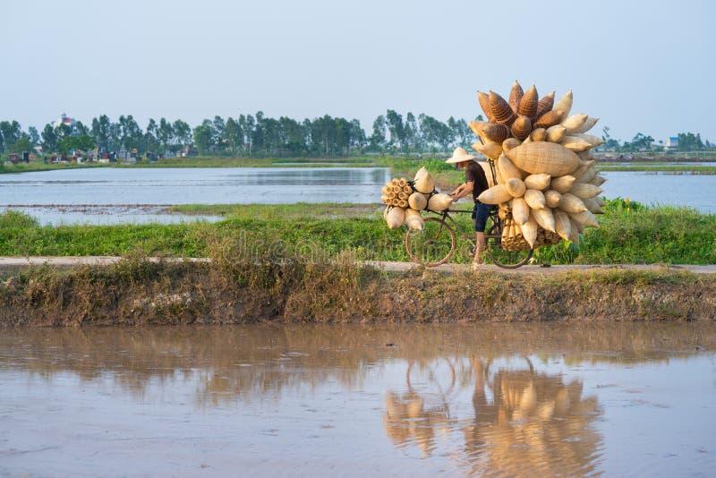 Польностью нагруженные въетнамские бамбуковые ловушки рыб на велосипеде, который нужно поставить к покупателю на дороге через кул стоковые изображения