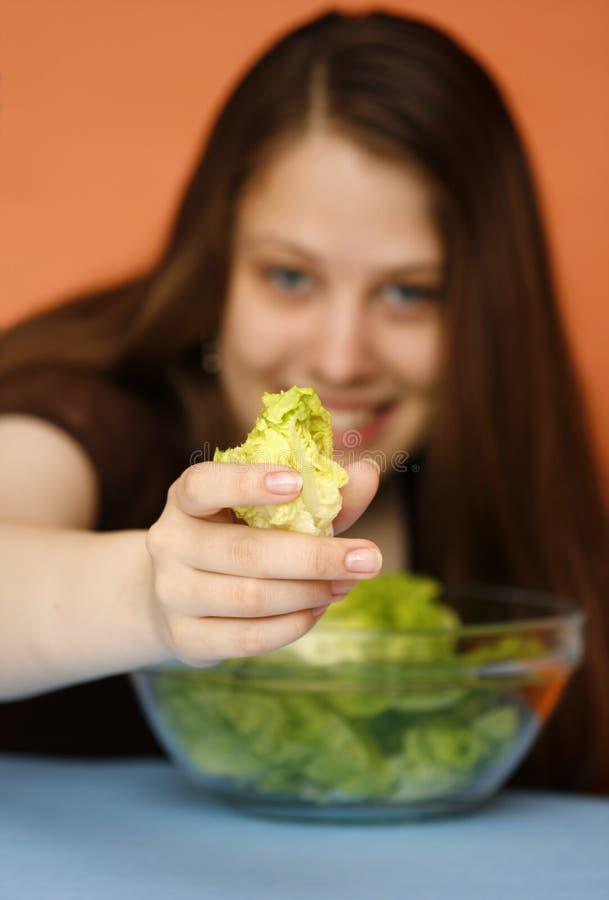полюбите салат вы стоковые фотографии rf