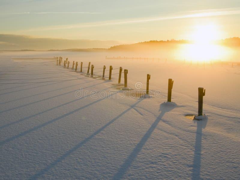 Полюсы возбуждения луга захода солнца снега зимы стоковая фотография