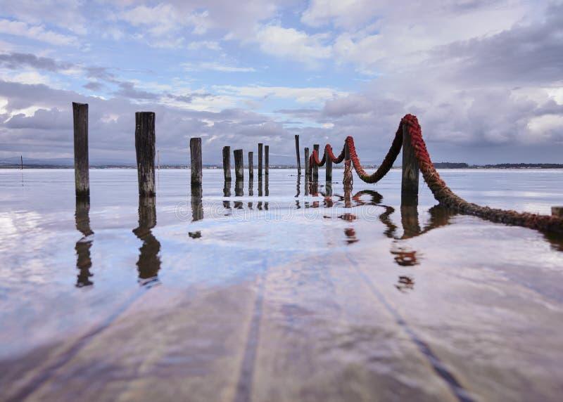 Поляки от погруженной в воду пристани стоковые фото