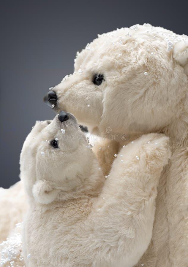 Полярные медведи стоковое изображение