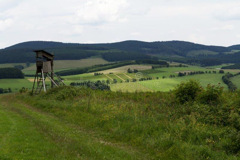 Поля зеленого цвета в Германии стоковое изображение