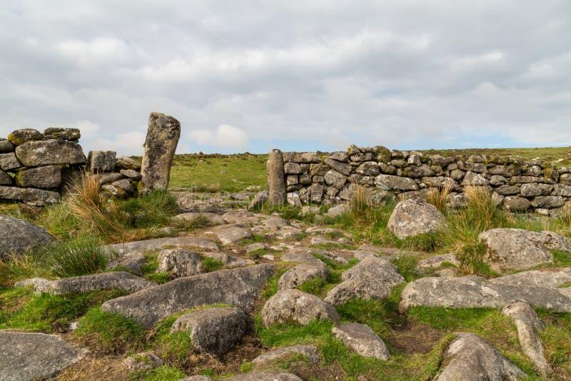 Поля и луга Dartmoor стоковые фото