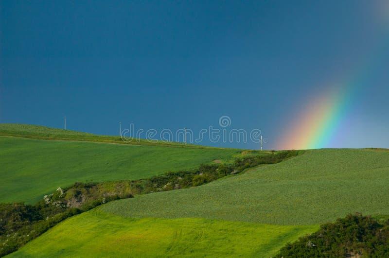 поля над радугой стоковое изображение