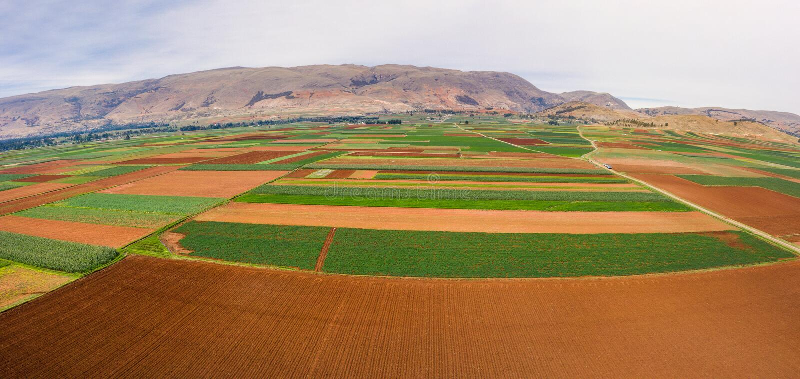 Поля урожая в долине Mantaro стоковое изображение rf