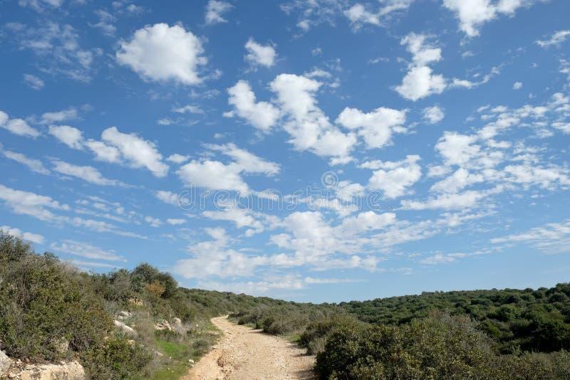 Поля, холмы и красивое небо в Иудея, Израиль стоковые изображения rf