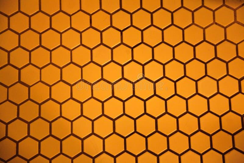 Пол шестиугольника стоковые фотографии rf
