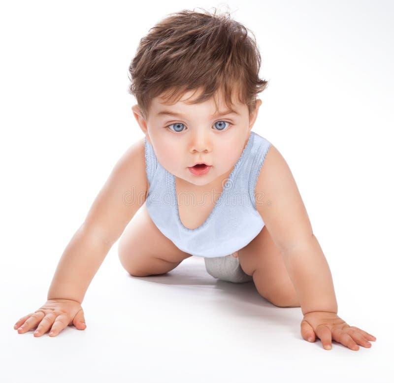 помадка месяца младенца 6 времен вползая стоковые изображения rf