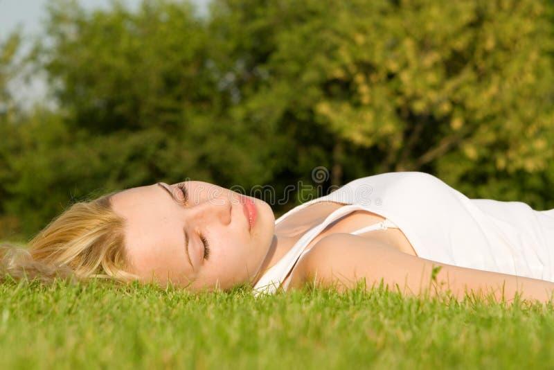 помадка остальных травы стоковое фото rf