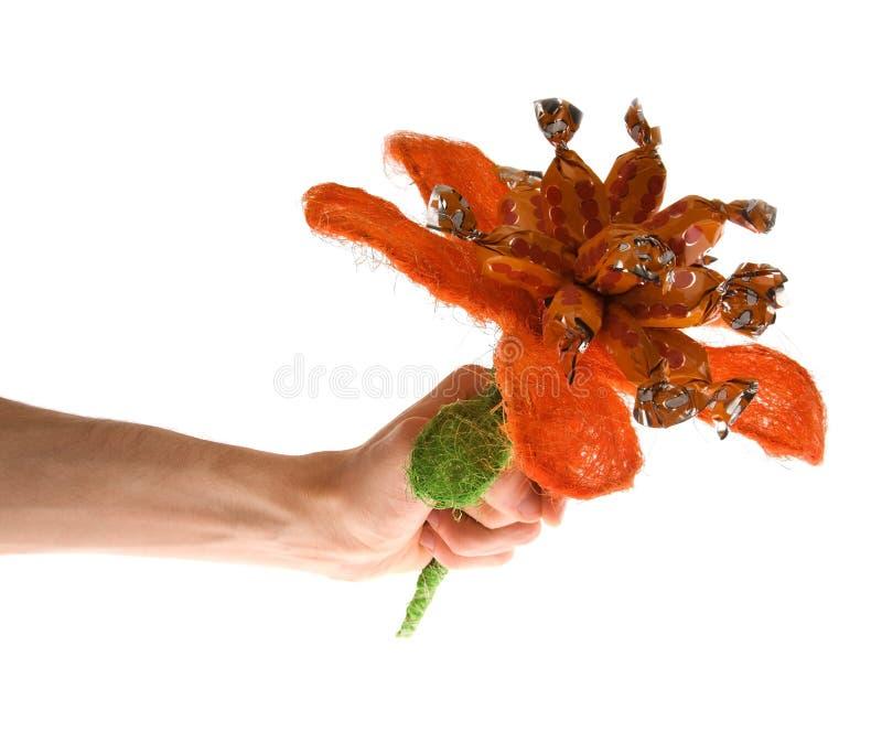 помадки цветка стоковая фотография