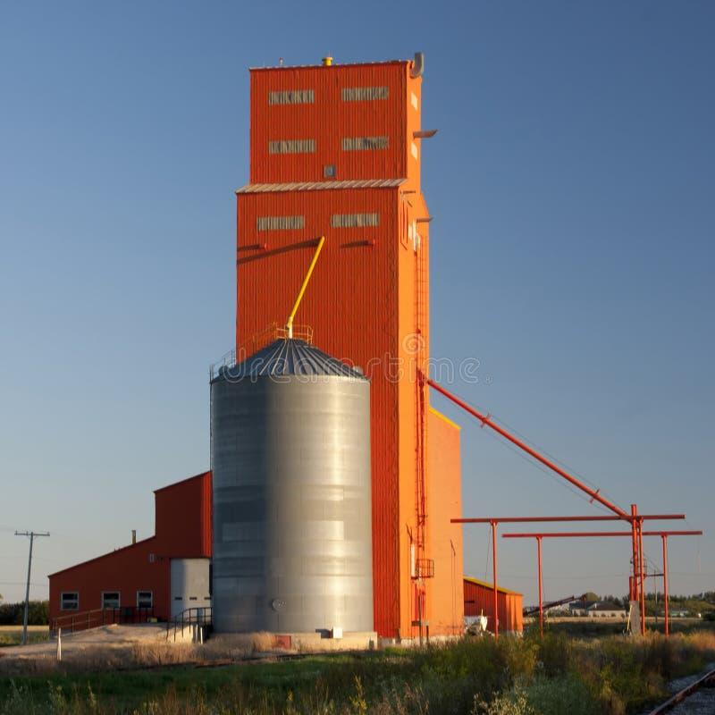 помеец зерна лифта стоковая фотография rf