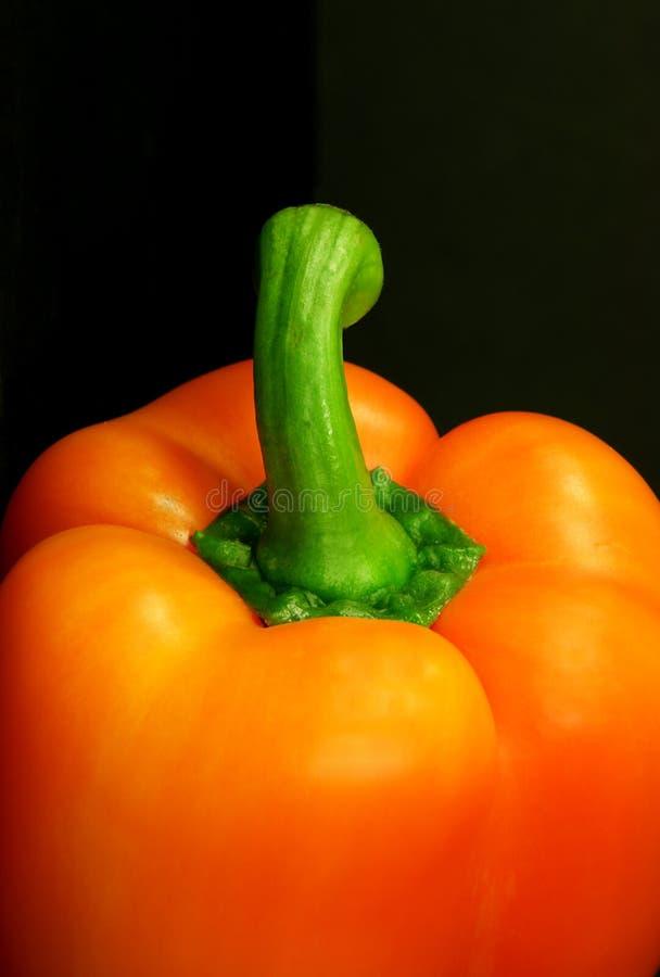 померанцовая помадка перца стоковое фото