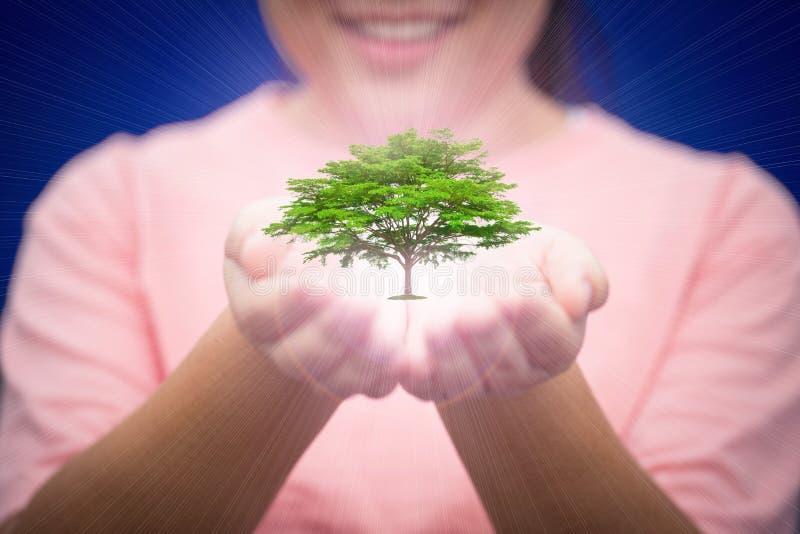 Помощь руки женщины для того чтобы защитить ресервирование природы и экологичности стоковое изображение