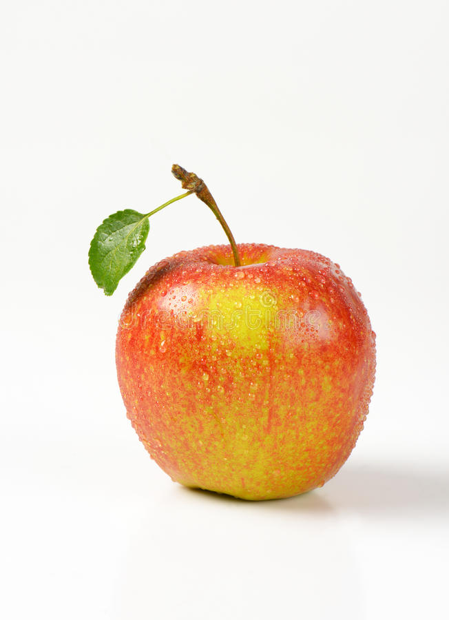 Помытое красное яблоко стоковое фото rf
