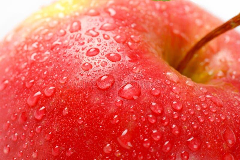 Помытое красное яблоко стоковое фото