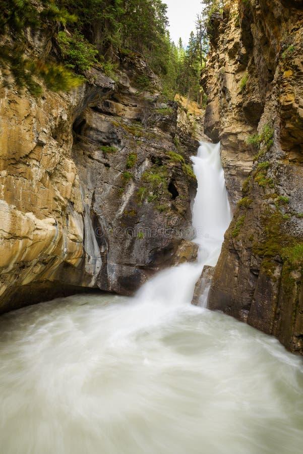 Понизьте падения в каньон Johnston, национальный парк Banff, Канаду стоковая фотография rf