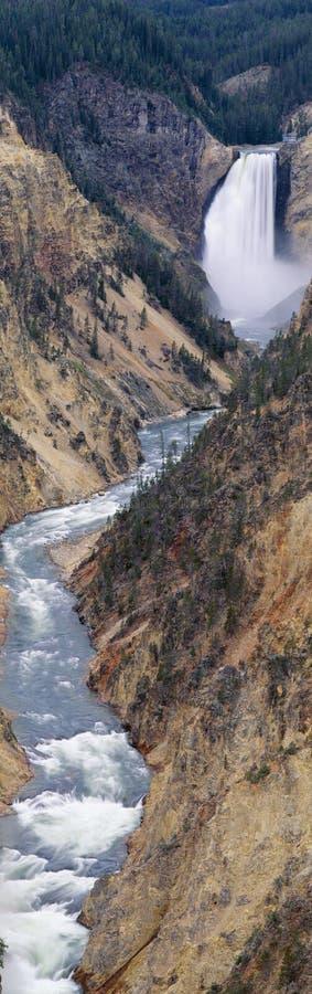 Понизьте падения на грандиозный каньон Йеллоустон, стоковое фото rf