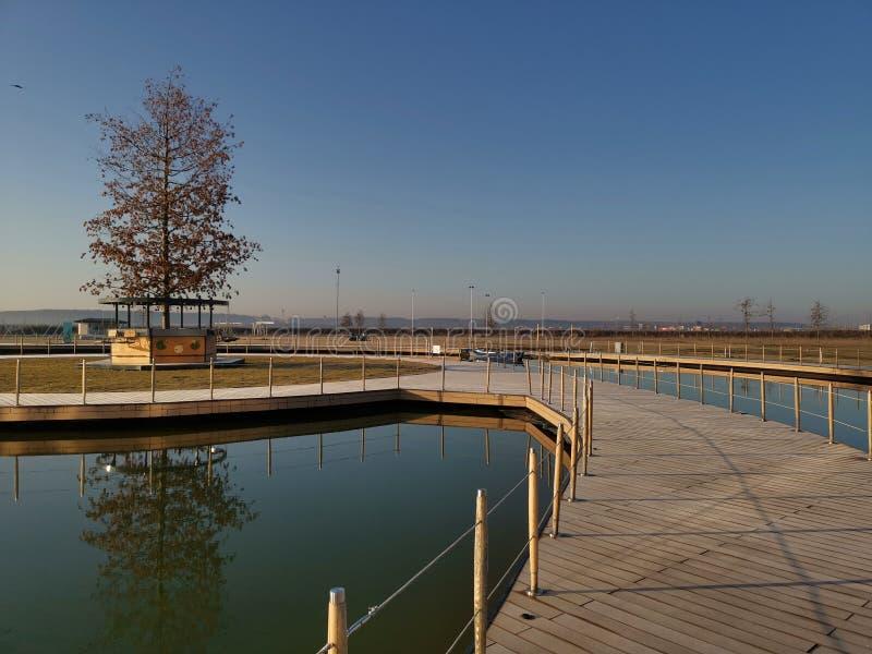 Понтон над озером и деревом на заднем плане стоковая фотография