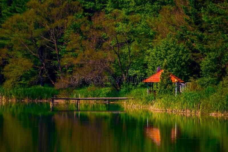 понтон на озере в Caras Severin, Румынии стоковые фото
