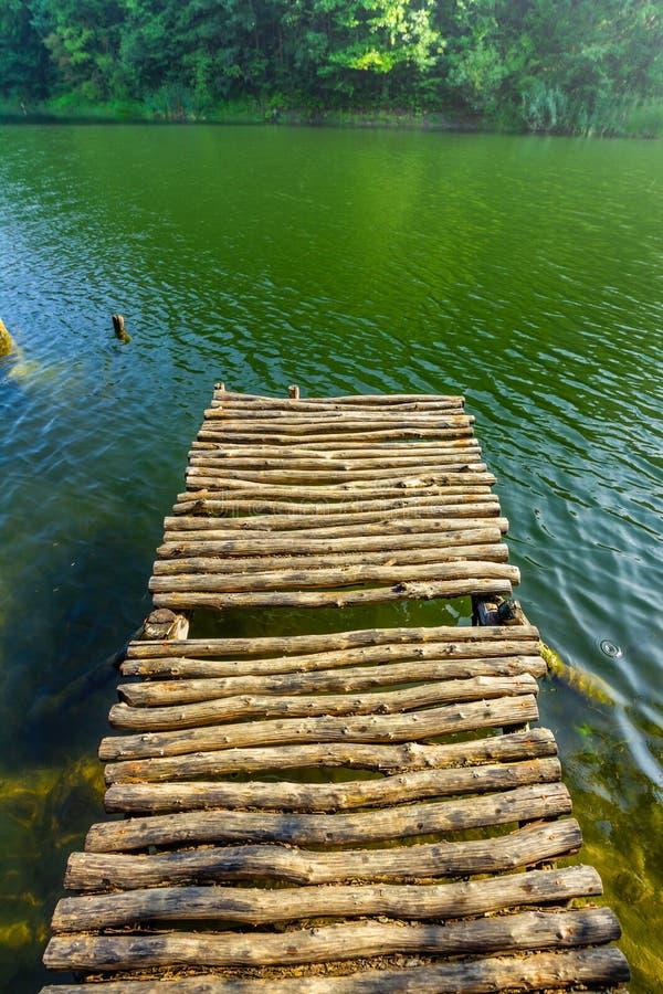 Понтон на озере леса стоковое фото rf