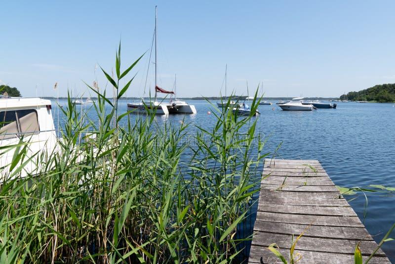 Понтон шлюпки деревянный в естественном озере Lacanau во Франции стоковое фото rf