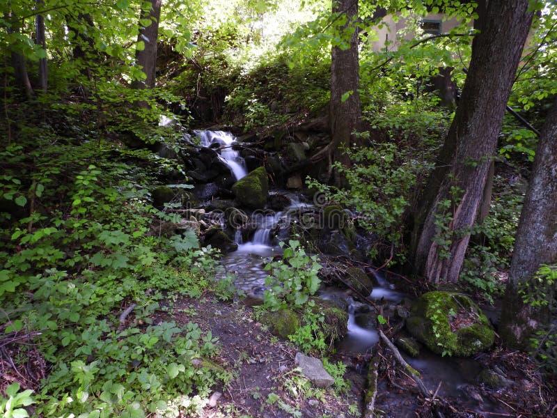 Понятие водопада im стоковая фотография rf