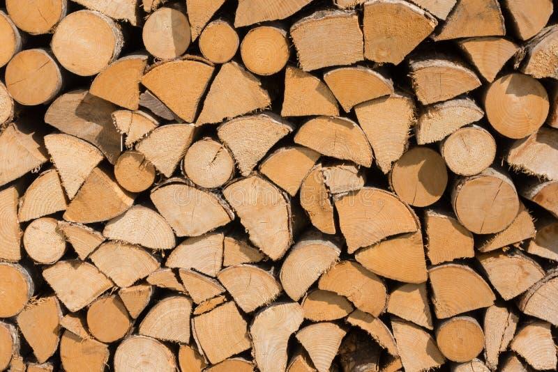 Поперечное сечение предпосылки стволов дерева Украшение дерева вырезывания Стволы дерева вырезывания помещенные совместно для инт стоковая фотография rf