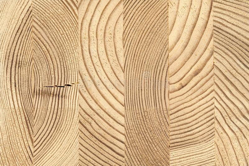 Поперечное сечение склеенного деревянного тимберса сосны стоковые изображения