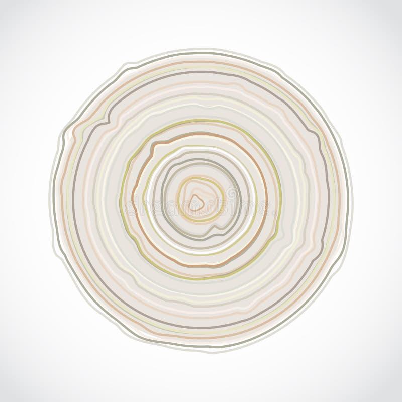 Поперечное сечение ствола дерева изолированное на белой предпосылке Деревянный пень звенит текстура, деревянная предпосылка векто иллюстрация вектора