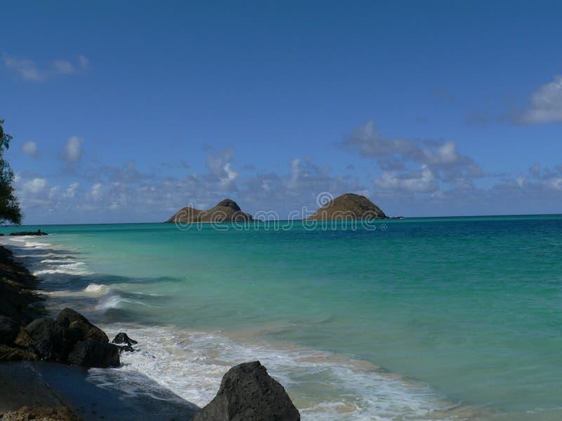 поплавайте вдоль побережья hawaiian стоковые изображения rf