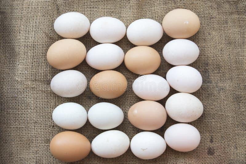 Популярные яичка еды сырцовые на старом мешке стоковое фото
