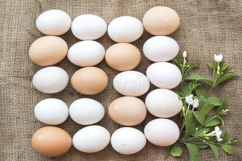 Популярные яичка еды сырцовые на старом мешке стоковая фотография rf