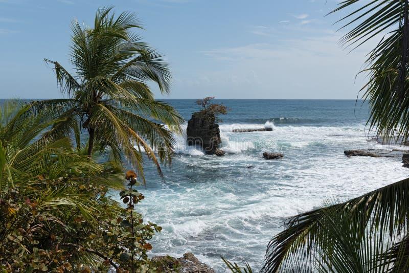Поплавайте вдоль побережья с утесом на Punta Мансанильо в охраняемой природной территории Gandoca Мансанильо национальной, Коста- стоковое изображение rf