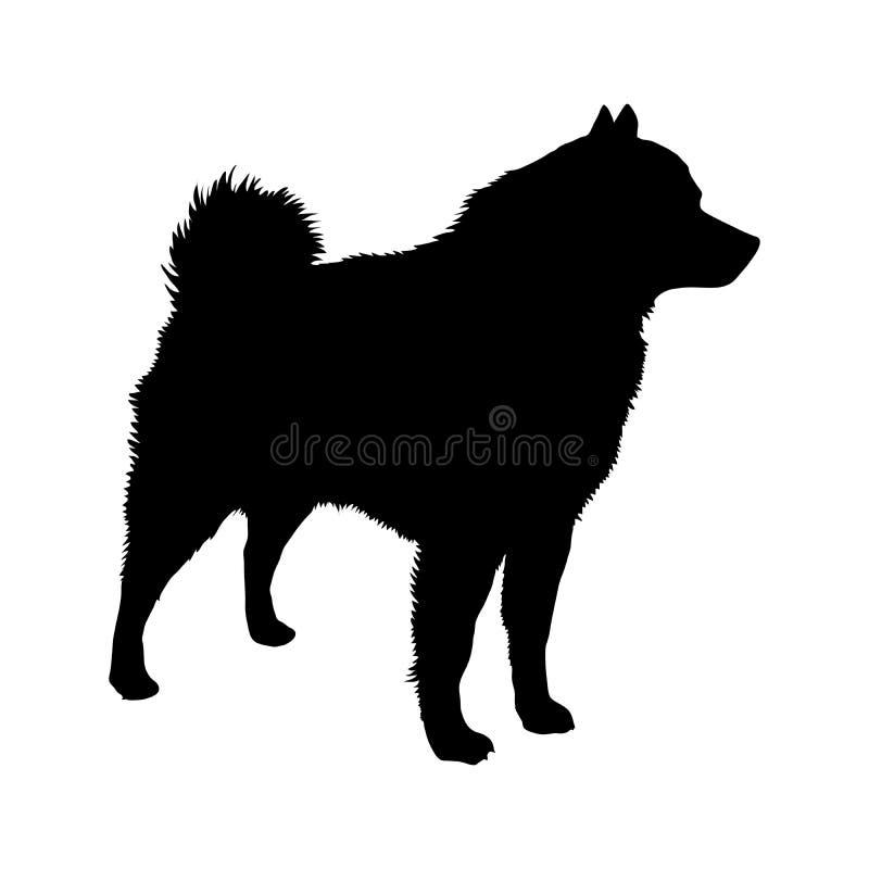 Порода Шипперке собаки силуэт иллюстрация штока