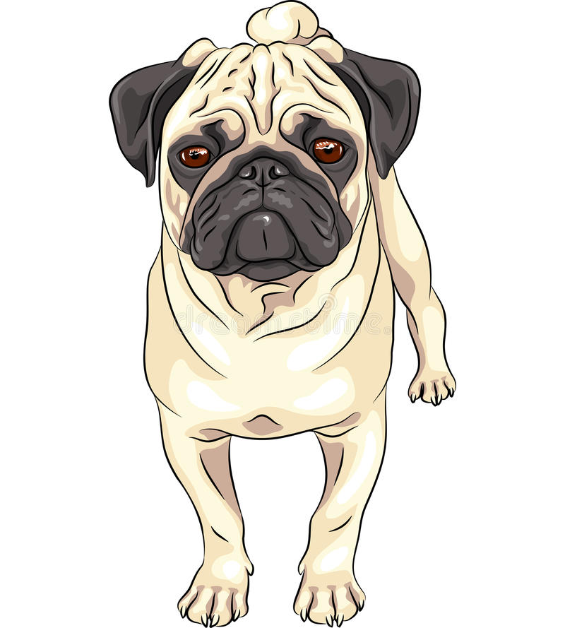 Порода мопса собаки эскиза вектора милая бесплатная иллюстрация