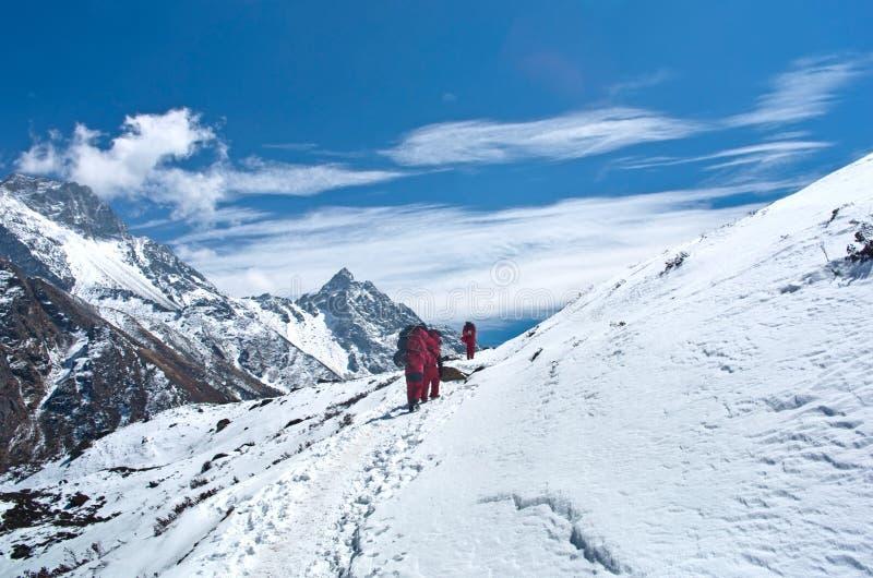 Портеры с тяжелым грузом, Непалом стоковое изображение