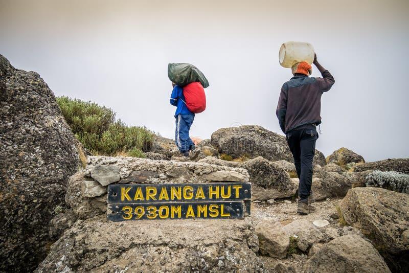 Портер trekking Mount Kilimanjaro, Танзания стоковое изображение
